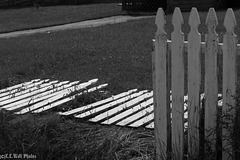"""Bright Pickets """"Laying Down on the Job"""" -- HFF"""