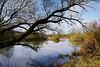 """Naturschutzgebiet """"Alter Main bei Volkach""""  - - Natural Reserve"""