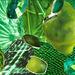 green for margaret