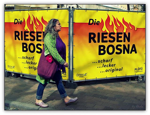 RIESEN BOSNA (◕‿-)