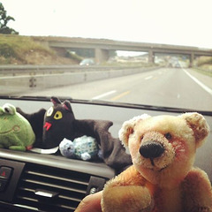 on the road, making new friends