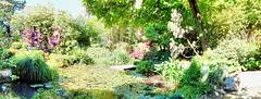 Panorama des  Lago Monet... ©UdoSm