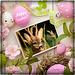 Bonnes fêtes de Pâques à tous ! Et bon we !Happy Easter