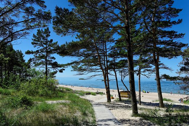 am Baltischen Meer bei Palanga (© Buelipix)