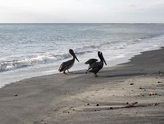 Plage romantique / Love at beach