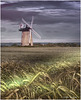 Haseley Windmill