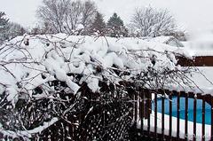 Première neige…..
