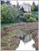 Reflets du château de Beaumont sur la Rance à Guitté (22)