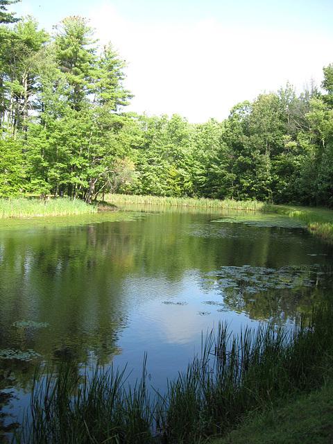 Lake Loree Around the Bend