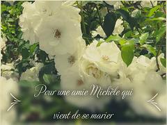 ** Pour une amie Michèle qui vient de se marier **