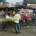 Agra- Bananas for Sale