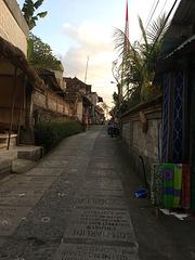 Notre rue tranquille à Ubud