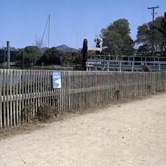 Public Shore?