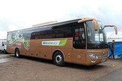 Westway Coach Services EL19 TRC at Showbus - 29 Sep 2019 (P1040469)