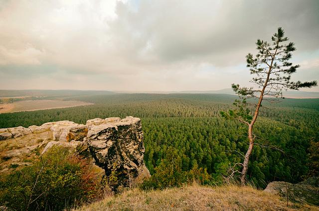 Mein Harzer Land
