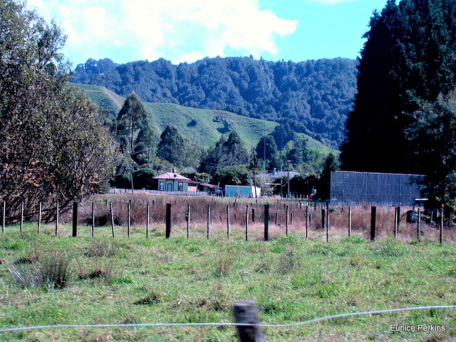 Home In The Hills