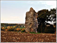Le Menhir de la Pierre Longue (22)