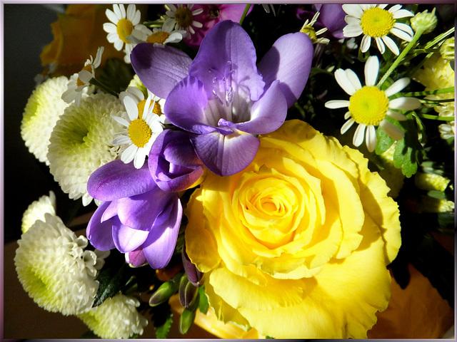 Chrysanthemum, Freesia, Rose. ©UdoSm