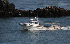 Lobster Boats and Rocks (3)