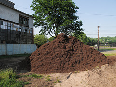 Very VERY nice pile of mulch.