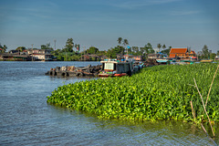 Chao Phraya river around Koh Kret near Bangkok, Thailand