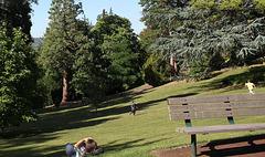 Au parc Bargoin
