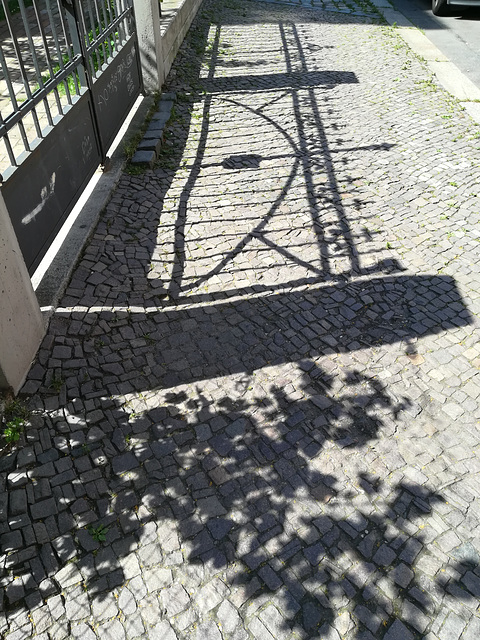 Happy Fence Shadow