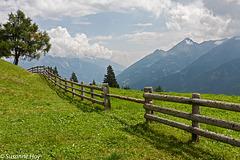 Der Zaun - The Fence