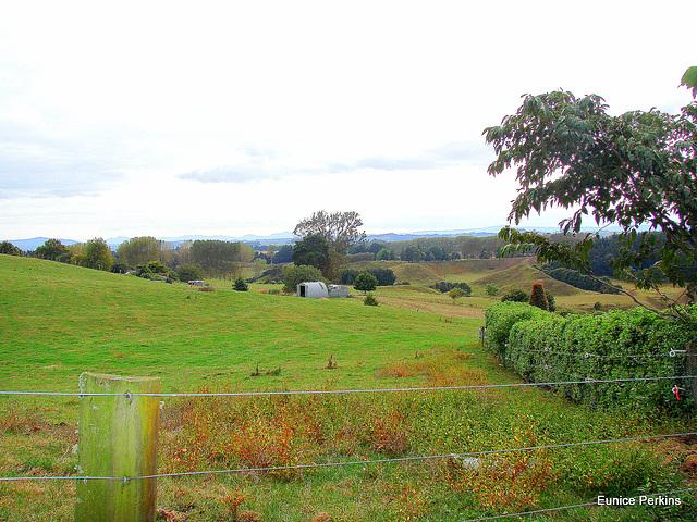 South Waikato Landscape.