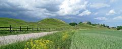 Sweden - Gamla Uppsala, royal mounds