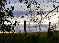 A late autumn evening
