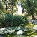 Valencia: jardines de Monforte, 9