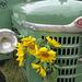 Blumentraktor