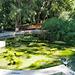 Valencia: jardines de Monforte, 11