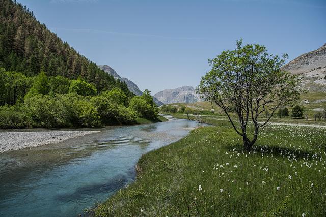 L'Ubaye se repose avant de devenir une rivière sauvage.