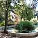 Valencia: jardines de Monforte, 12