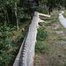 20140911 5147VRAw [NL] Krokodil mit Schlange, Skulptur, Terschelling