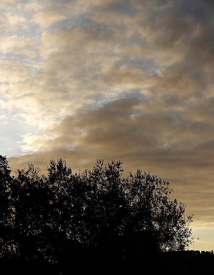 le ciel de ce matin,