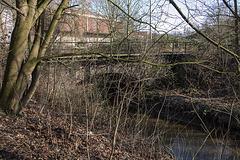 20160216 0061VRAw [D~LIP] Salze, Eisenbahnbrücke, Bega-Aue, Bad Salzuflen