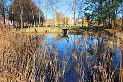 Kleiner Teich im Park