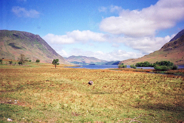 Crummock Water from near Scales (Scan from May 1991)
