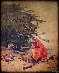 arbre de vie en terrain sterile
