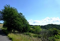 DE - Lind - Auf dem Panoramaweg