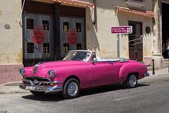 Havana Club - pink
