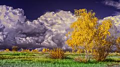 Ein echter Herbst Himmel