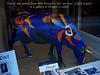 A Wim Ricourt cow Bruges 2005