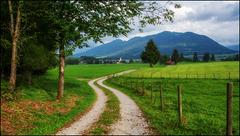 The Path - HFF