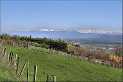 La Côte-Saint-André (38) Vue sur les Alpes.