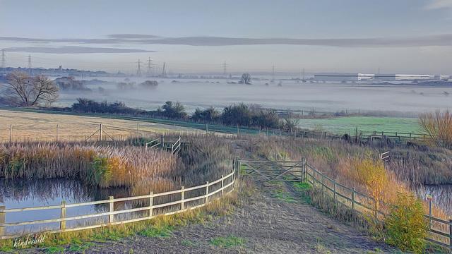 Thames Path   /   Nov 2020