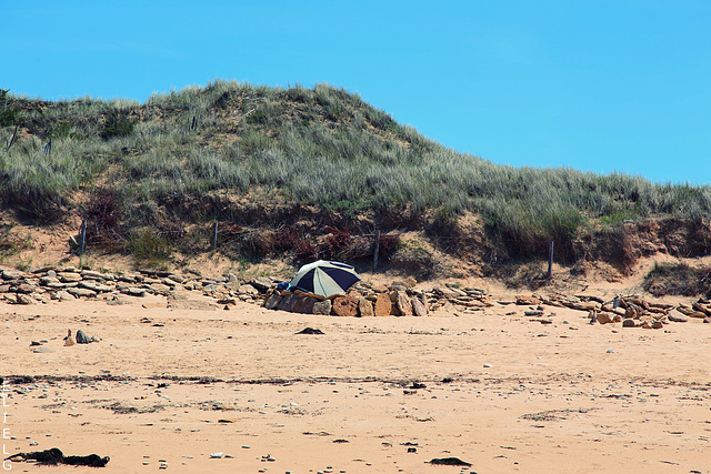 sur la plage du Lizay   île de Ré